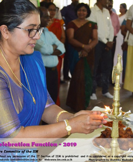 New Year Celebration 2019