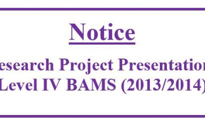 Research Project Presentations Level IV BAMS (2013/2014)