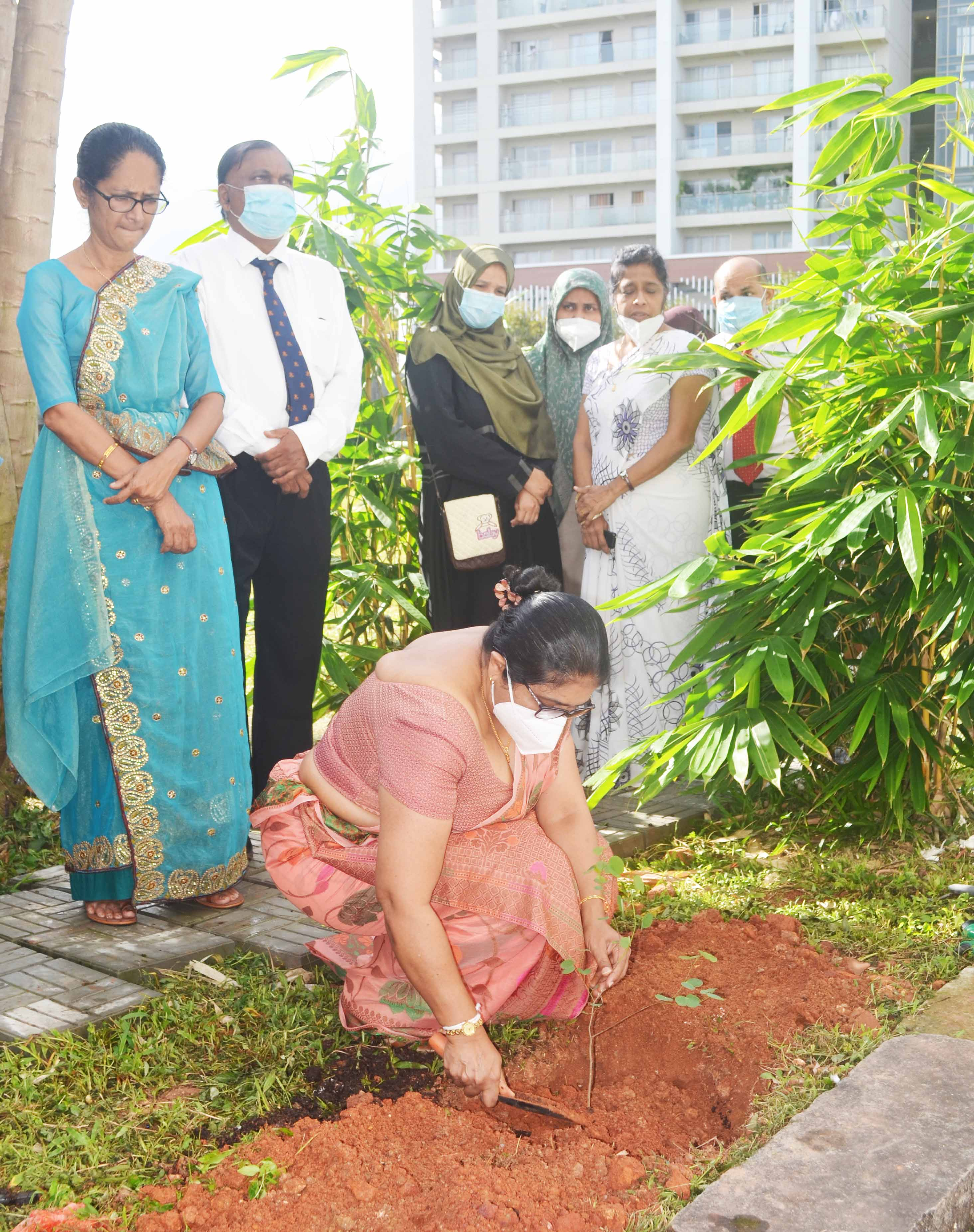 Planting of Indigenous Medicinal Plants program